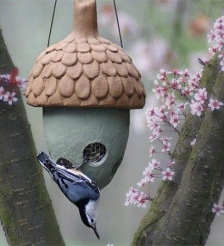 Usa-made Acorn-shaped Nuthouse Cafe Bird Feeder For Songbirds