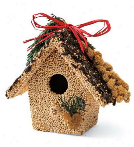 White Birdseed-covered Wooden Birdhouse