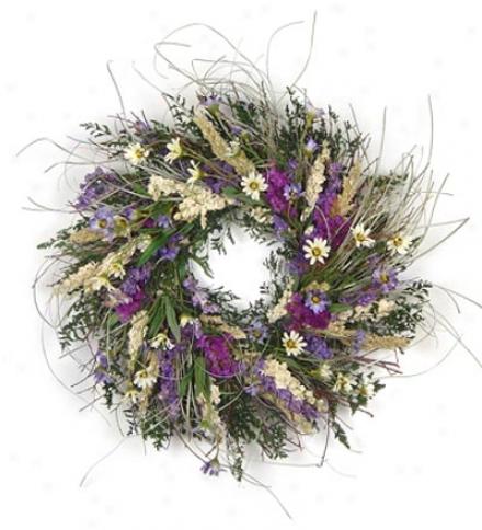 "Wild Daisy Wreath, 16"" Dia."