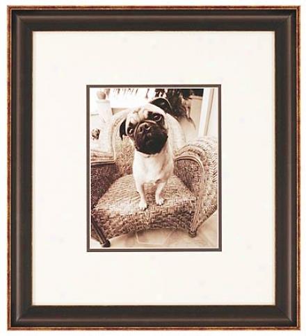 Curiosity Pet Portrait Print