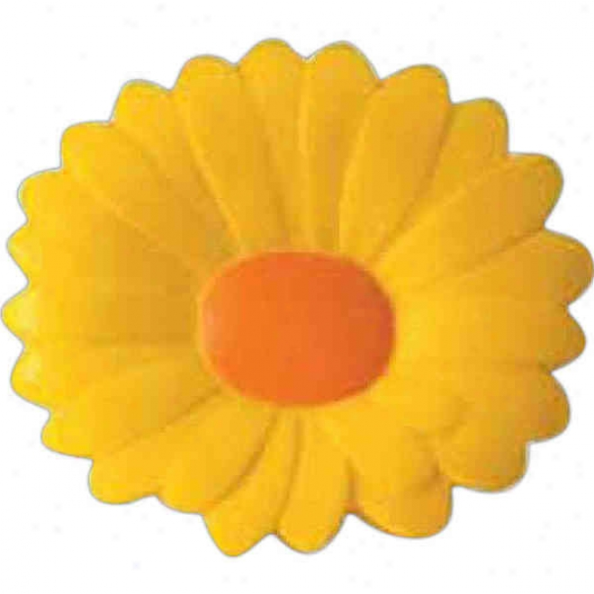 Chrysanthemum Squeezie