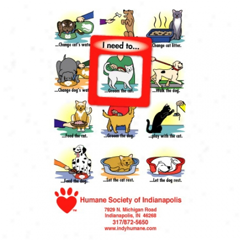 """Frame-of-mind Gator Mag - Dog And Cat - Frame Magnet, 3 5/8"""" X 6"""", Frame Is 1.6"""" X 1.8"""", Approximately .25 Mil. Thickness"""