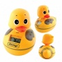 Waterproof Am Fm Duck Radio With Water Thermometer
