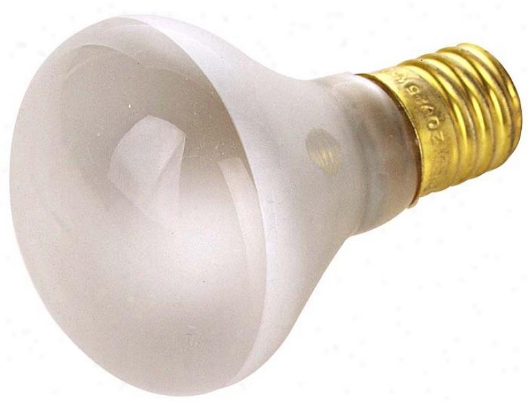 40 Watt R-14 Intermediate Inferior Mini Spot Bulb (05195)