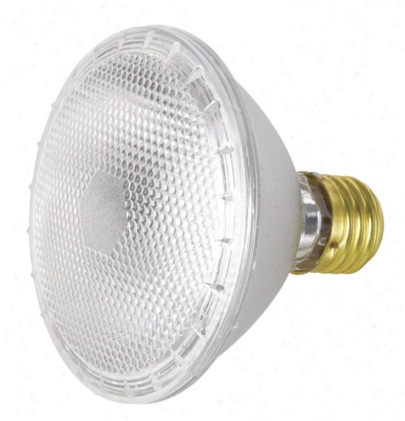 75 Watt Par30 Flood Light Bulb (90015)