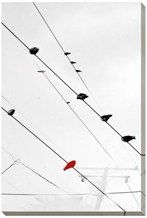"Birds On A Wire Ii Giclee Indoor/outdoor 48"" Aloft Wall Art (l0754)"