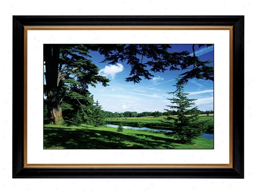 "Blue Vista Giclee 41 3/8"" Wide Wall Art (54284-80384)"