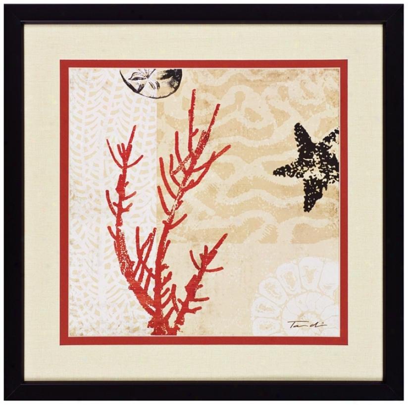 "Coral Reef 'sea Star' 22"" Square Wall Art (j6066)"