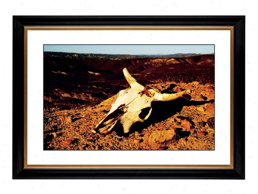 "Desert Skull Giclee 42 3/8"" Wide Wall Art (56044-80384)"