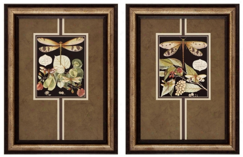 "Dragonfly I And Ii 24"" High Framed Wall Art (p2287)"