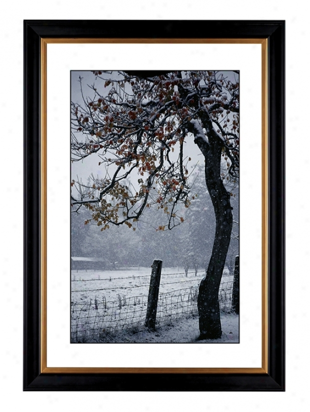 "Foggy Day Giclee 41 3/8"" High Wall Art (64323-80384)"