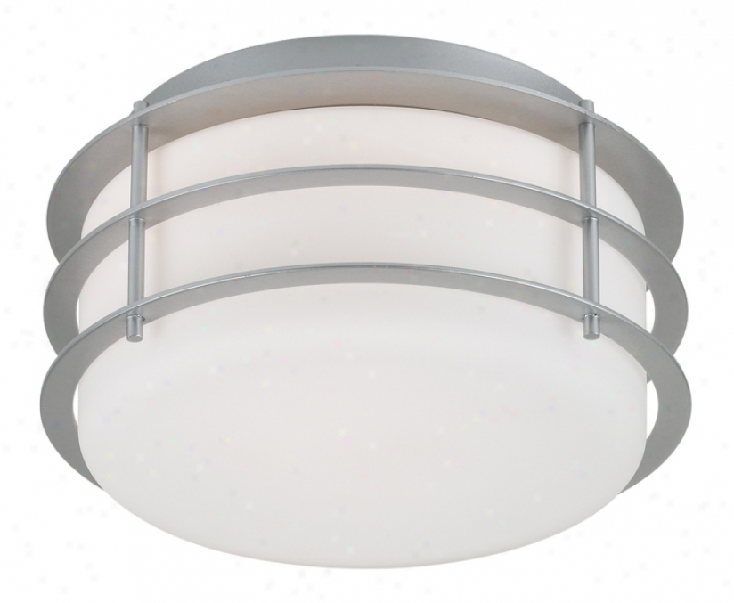 "Forecast Hollywood Hills Collection 10"" Wide Ceiling Light (09009)"