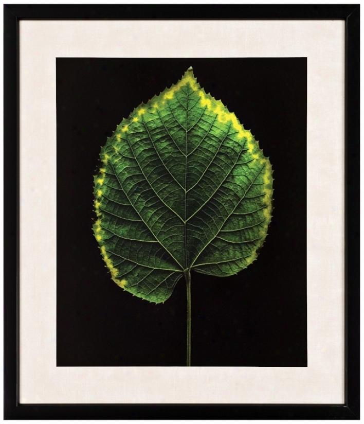 """Green Leaf 29"""" High Wall Art (j5972)"""