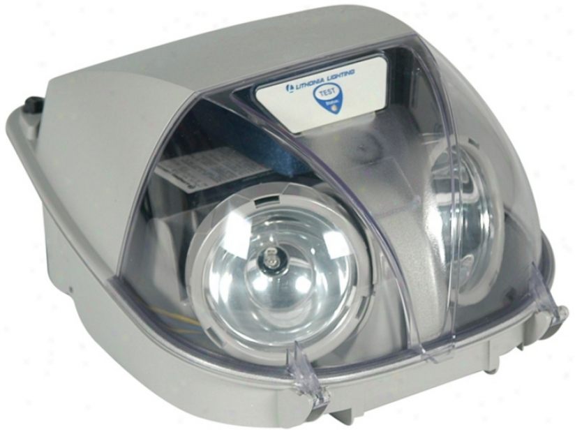 Grey Two-light Bug Eye Emergency Light (39477)