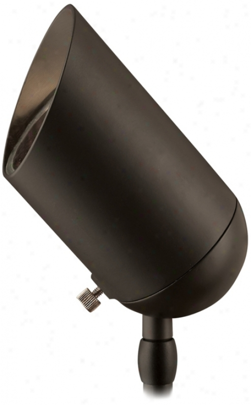 Hinkley Bronzr 75 Watt Low Voltage Landscape Spotlight (48836)