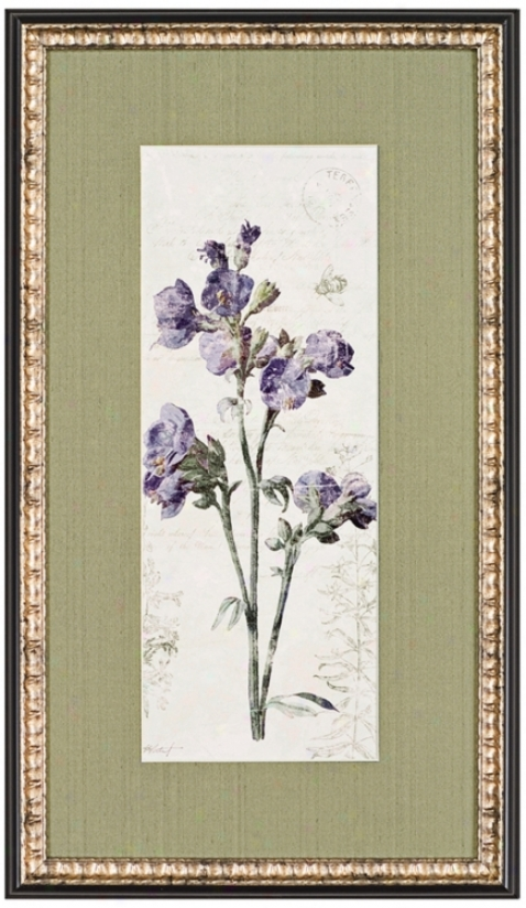 "Jacobs Ladder Flower 28"" Boastful Wall Art Print (j5869)"
