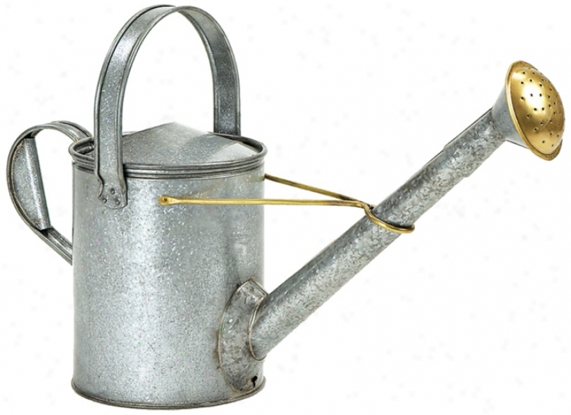 Long-necked Galvanized Steel Watering Can (u9881)