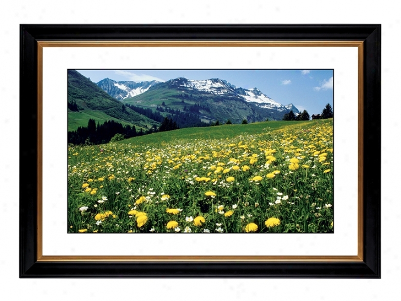 "Mountain Flower Meadow Giclee 41 3/8"" Wide Wall Art (56266-80384)"