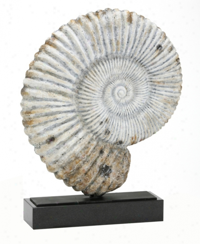 Nautilus Fossil Shell Sculpture (91214)