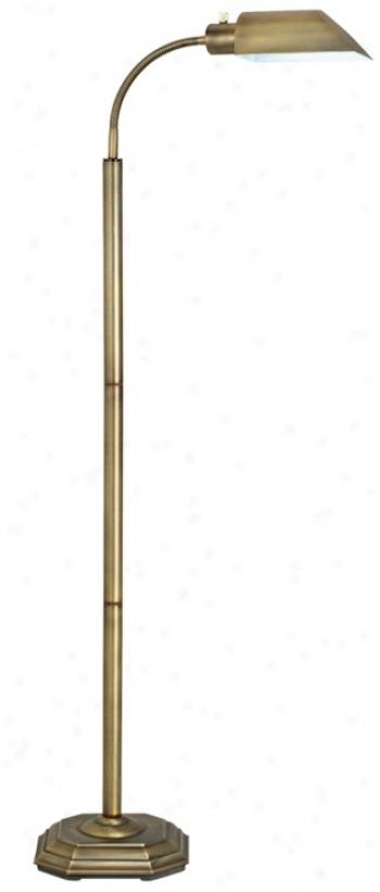 Ott-lite Alexander Brass Energy Saving Gooseneck Floor Lamp (97708)