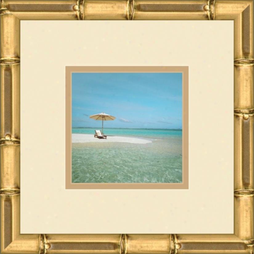 "Paradise Cove D 13"" Regulate Wall Art (05318)"