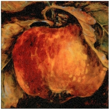 "Red Apple Wrapped Canvas Print 11 1/2"" Wide Wall Art (j4128)"