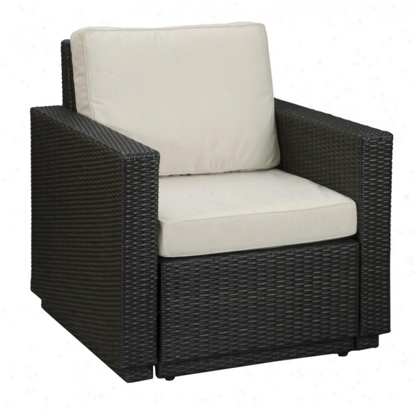 Riviera Brown Face with ~ Cushion Exterior Arm Chair (t1325)