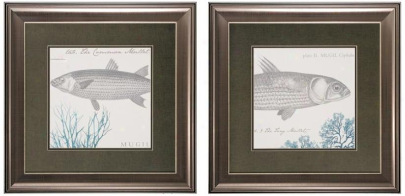 Set Of 2 Sea And hSore V/vi Framed Fish Wall Skill P5ints (v6593)