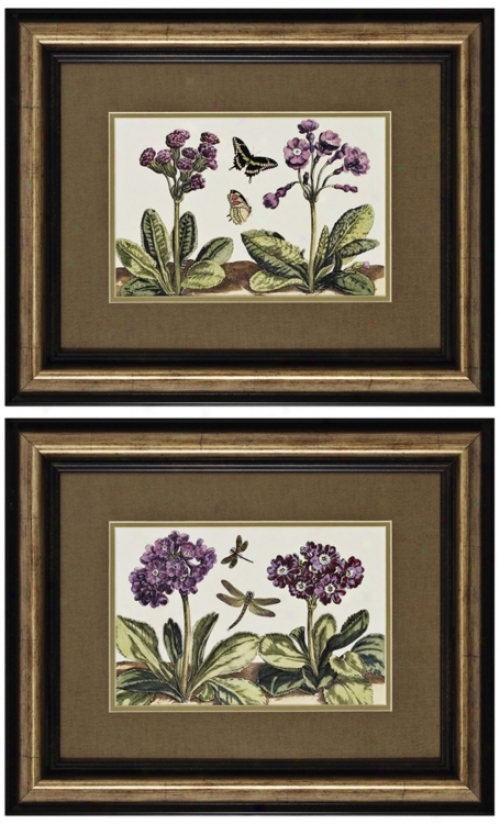 Set Of 2 Small Garden I And Ii Framed Prints Wall Art (k2682)