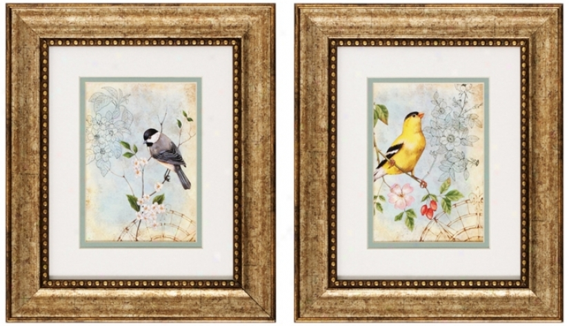 Set Of 2 Songbird Ii/iii 13&quot; High Bird Wall Art Prints (v6152)