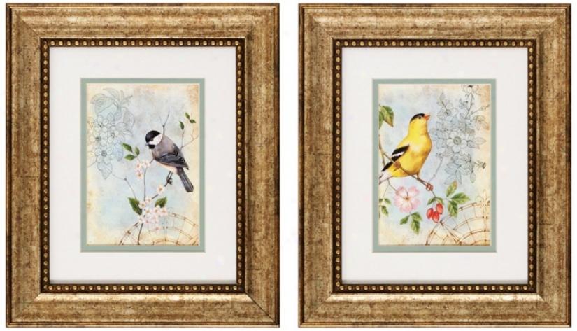 """Set Of 2 Songbird Ii/iii 13"""" High Bird Wall Art Prints (v6152)"""