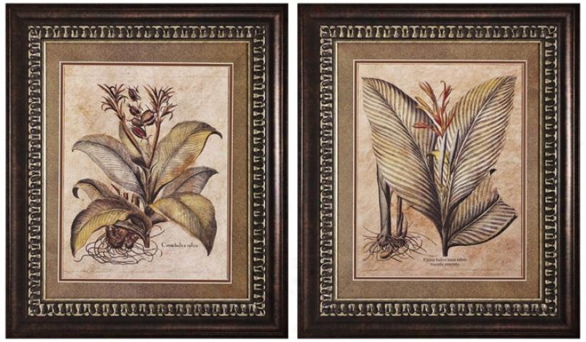 Set Of 2 Valencia I And Ii Framed Prints Wall Art (k2726)