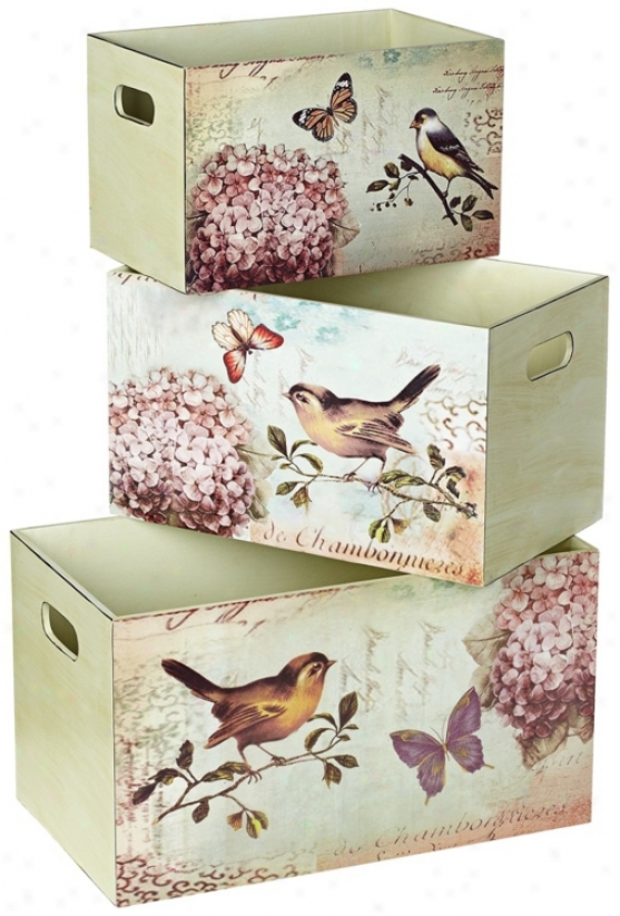 Set Of 3 Bird Design Decorative Storage Boxes (u2837)