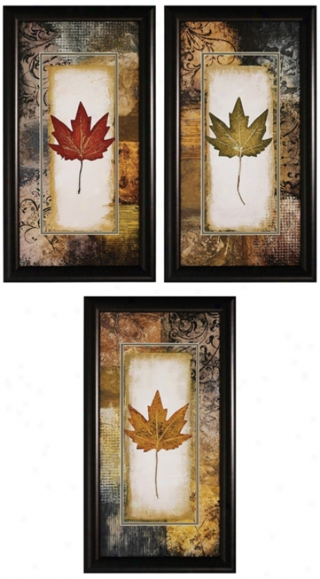 "Set Of 3 Leaf 27"" High Framed Wall Art Prints (v6871)"