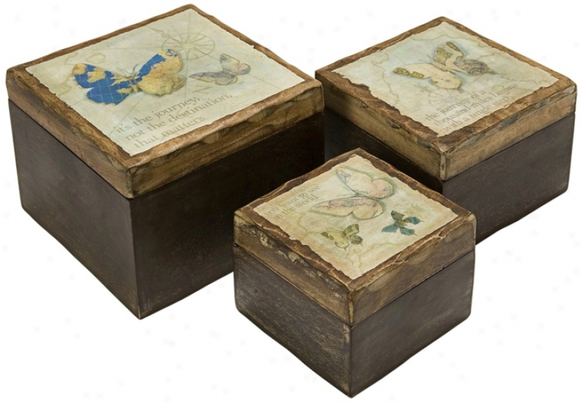 Set Of 3 Worldly Butterfly Wood Boxes (t9970)