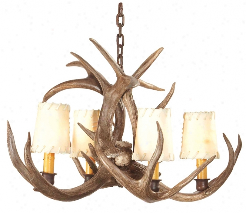 Small Coues Deer Antler Chandeli3r (m1634)