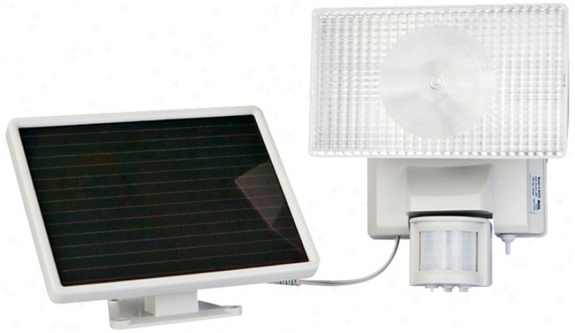 Solar Powered Movement Activated Halogen Security Floodlight (t4492)