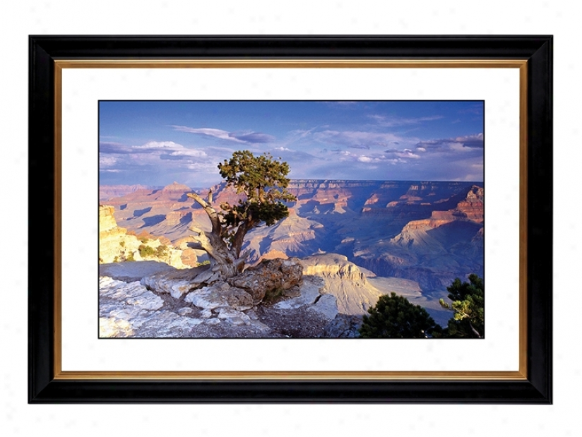 "Southwest Canyon Giclee 41 3/8"" Wide Wall Art (47303-80384)"