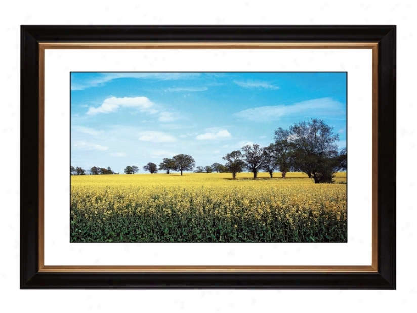 "Summer Field Giclee 41 3/8"" Wide Wall Art (57077-80384)"