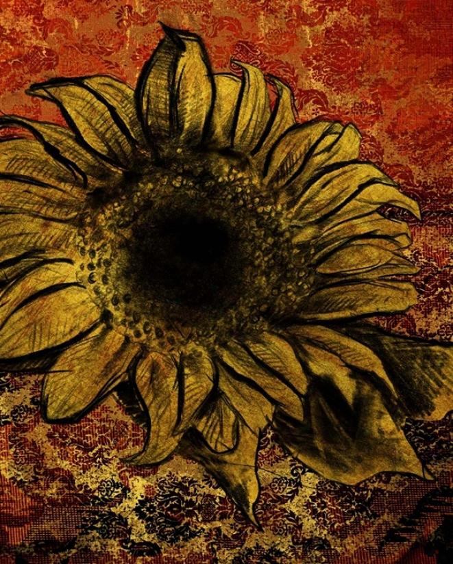 """Sunflower Iii Giclee 14"""" High Canvas Wall Ar (n1802)"""