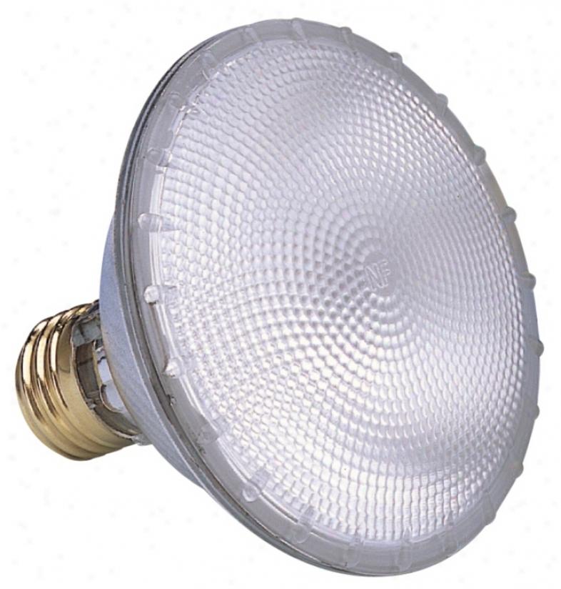 Sylvania Par30 Flood Capsylite Light Bulb (08097)