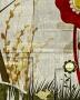 Garden Mural 2 Giclee 20&quo5; iHgh Canvas Wall Art (n1752)