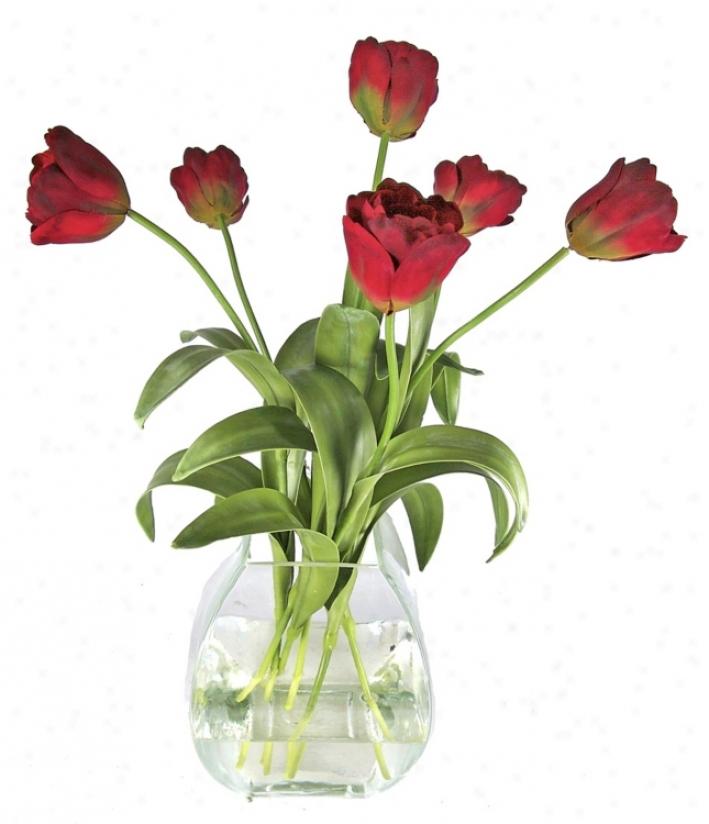 Tulip Flowers Water Garden (h4490)