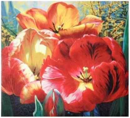 "Tulip Trio Wrappe Canvas Print 36"" Wide Wall Art (j4125)"