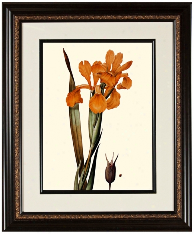 "Warm Floral A 23 3/4"" High Framed Botanical Wall Cunning (w0481)"
