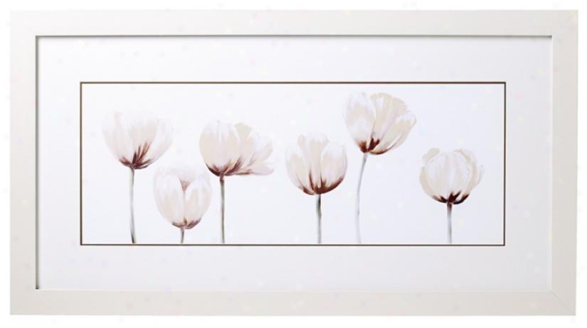 "White Tulip Line-up I 32"" Wide Print (k4907)"