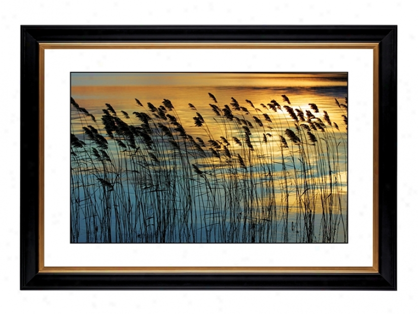 "Wind Giclee 41 3/8"" Wide Wall Art (53395-80384)"