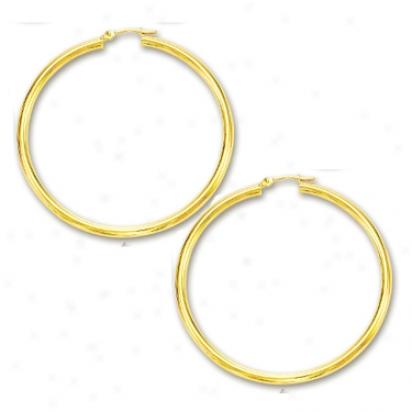 14k Yellow 2x40 Mm Shiny Hoop Earrlngs
