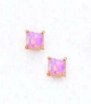 14k Yellow 4 Mm Square Pink Opal Post Stud Earrings