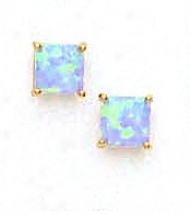 14k Yellow 6 M mSquare Light Blue Opal Earrings